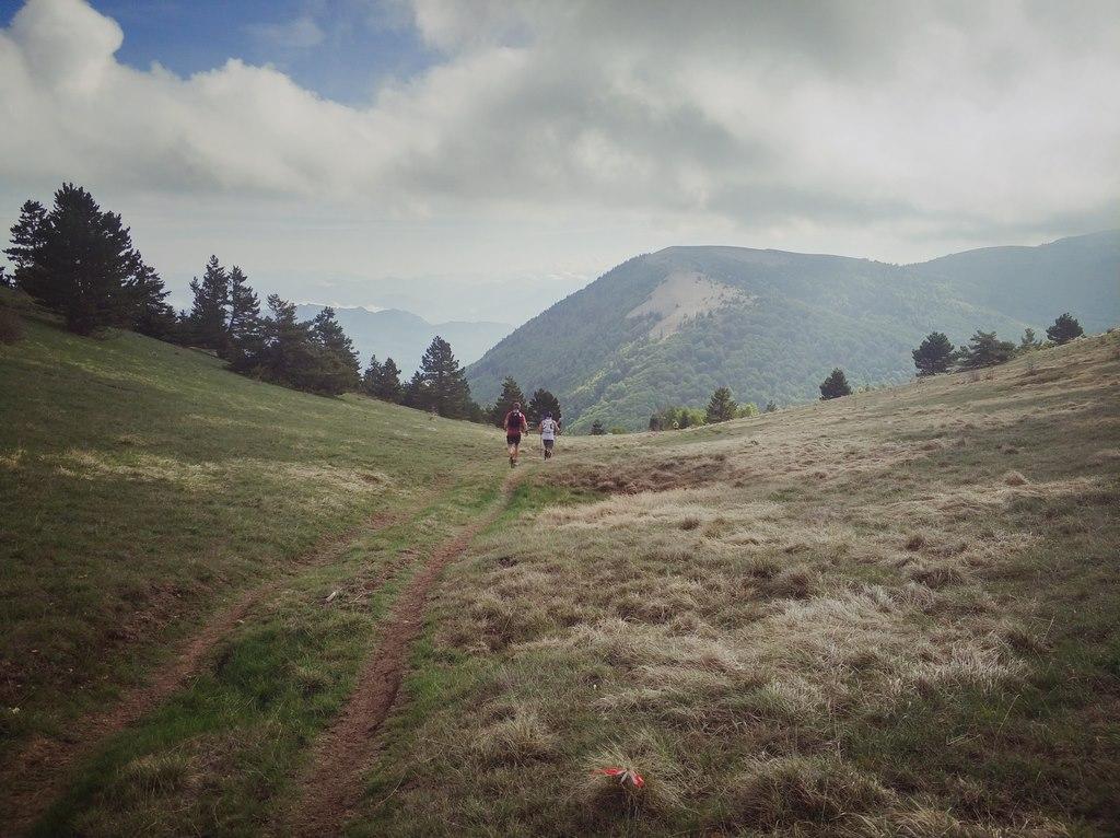 Trail de Haute-Provence 2018